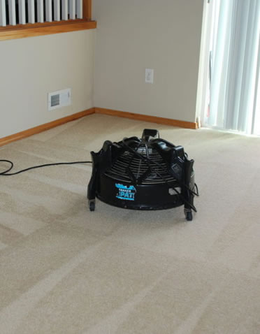 carpet-cleaning-seattle-with-high-speed-fan